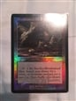 foil mire front 2 corrected