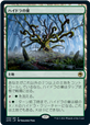Hydra's Nest