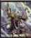 Raticle's avatar