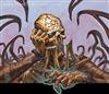 Aethenlor's avatar