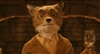 BourbonFox's avatar