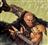 Deruvid's avatar