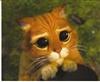 syrenz31_unmerged83e0827c's avatar