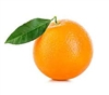 orangedude's avatar