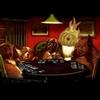 LanternIQTeam's avatar