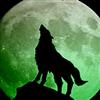 coyotemoon722's avatar