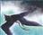Aazadan's avatar