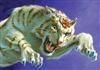 Tigerbaron2's avatar