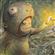 Hexprone's avatar